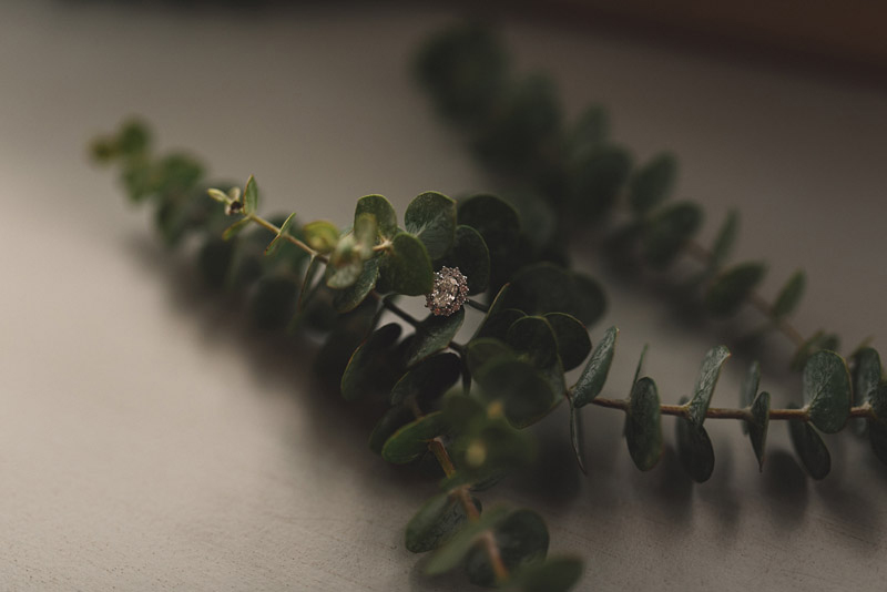 close up of wedding ring in green foliage