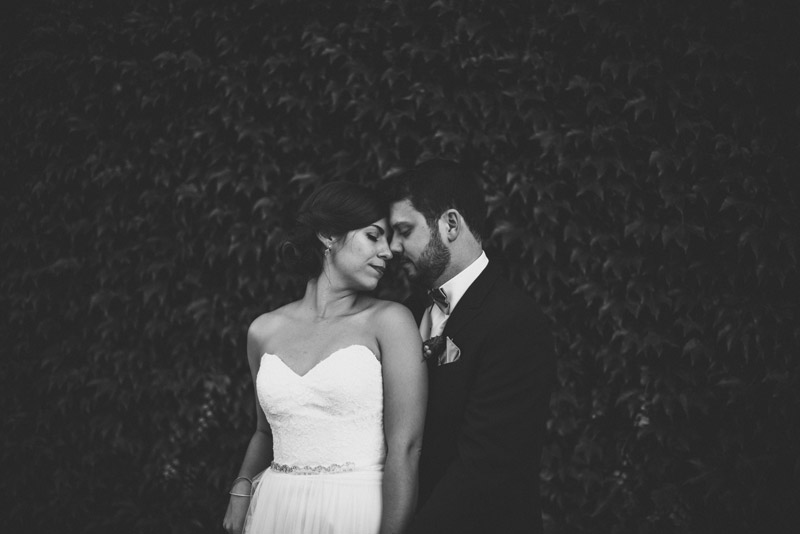 couple embracing in front of ivy wall